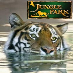 Jungle Park - Parque las Aquilas