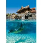 Twin Ticket - Siam Park i Loro Park