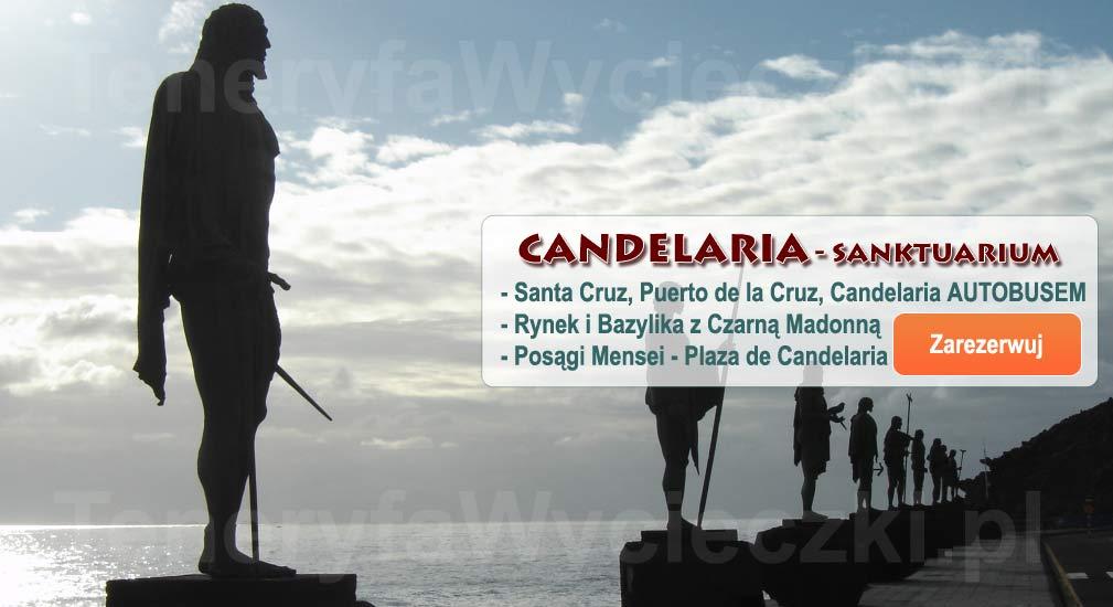 Teneryfa - Wycieczki autobusem Santa Cruz de Tenerife, La Laguna, Candelaria