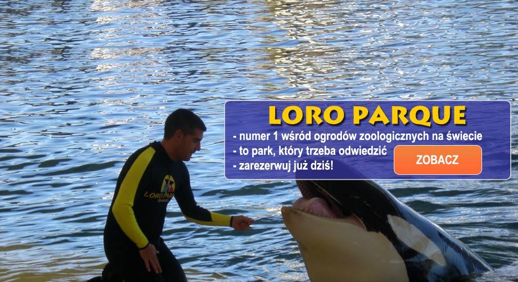 Teneryfa - Parki tematyczne - Loro Park - Loro Parque