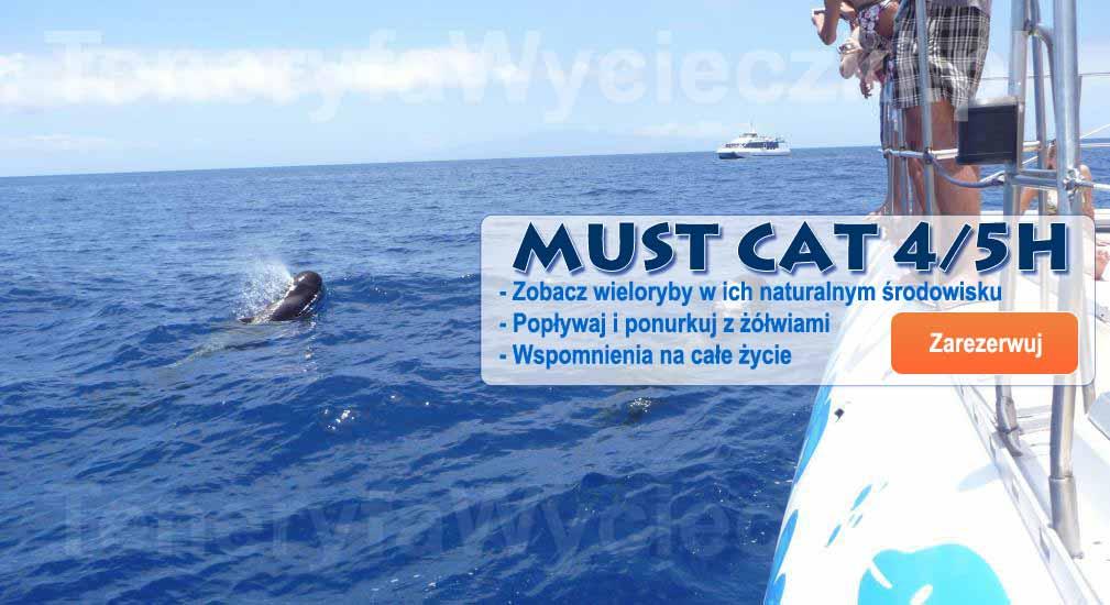 Teneryfa - Wycieczki oceaniczne Must Cat 4/5h